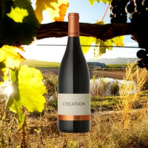 Creation Wine South Africa Hong Kong Syrah Red wine online